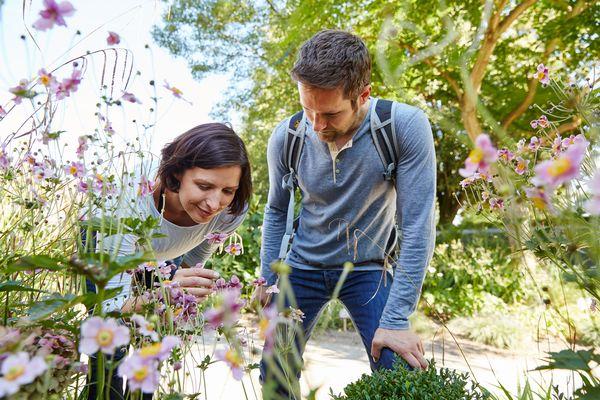 """Bibelgarten Werlte - Besucher im Gartenbereich """"Schöpfungsgarten"""" entdecken die Blütenpracht"""